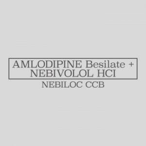 Ajanta Nebiloc logo tile