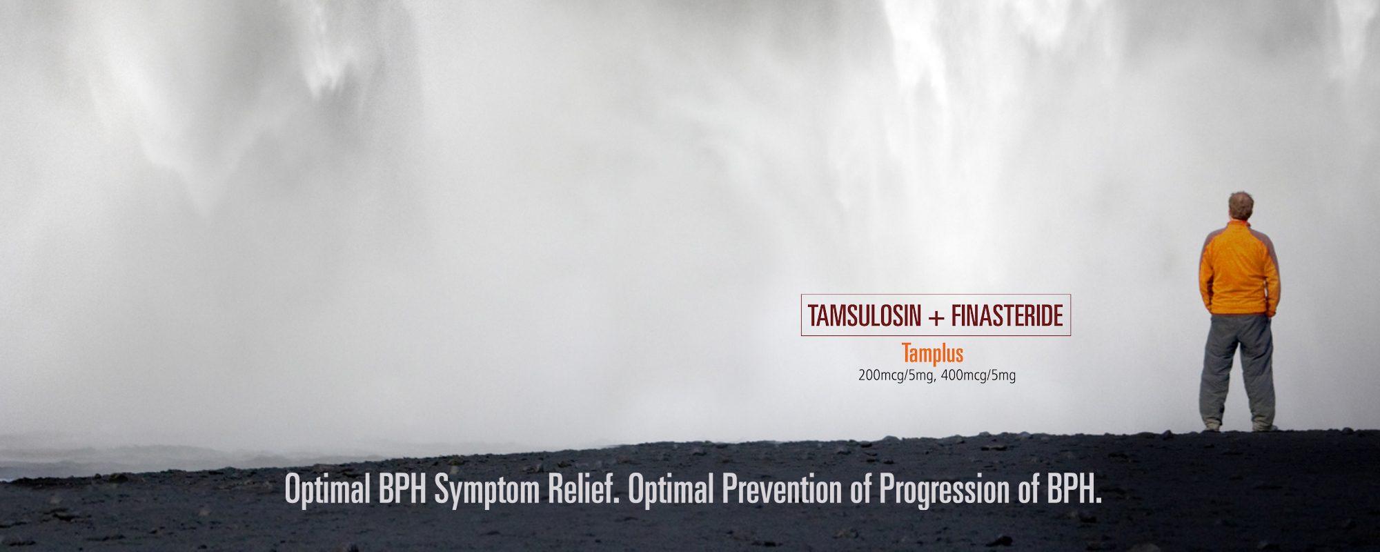 Ajanta Tamplus Feature W